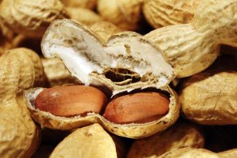 peanuts-1046140_1920