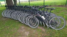 Rad-viele