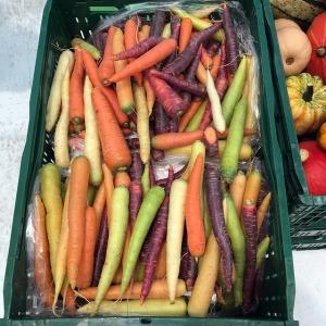 2017-02-carrots-1680741_640