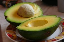 2017-04-avocado
