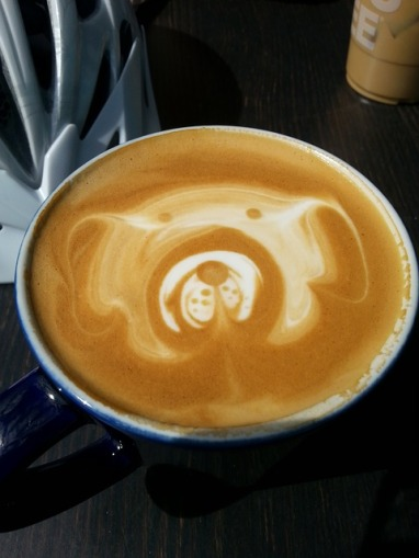 coffee-dog