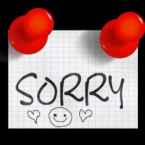 sorry-pin