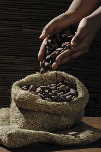 12-cocoa-beans