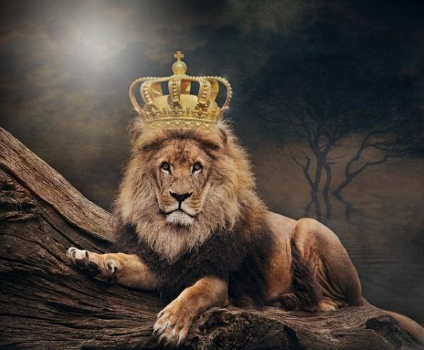 2019-01-king